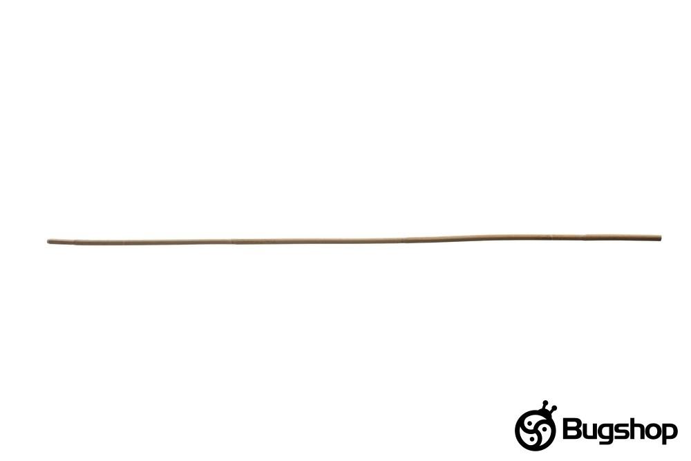 Rattanrohr
